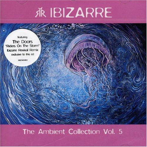 The Ambient Collection Vol.5 - Amazon Musica (CD e Vinili)