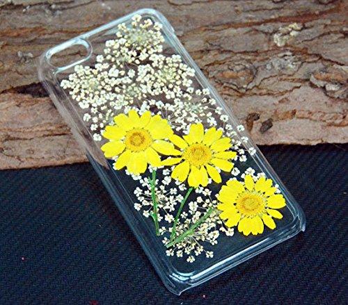 gepresst Getrocknete Blumen, Samsung Galaxy S4Note 4., plastik, Dried Flower e, iPhone 5c Dried Flower e