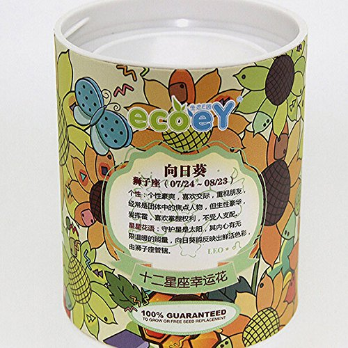 bluelover-diy-mini-zodiac-lucky-flower-potted-office-desktop-plant-decor-leo