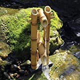 Aquascape Bamboo Fontana per laghetti, Contenitore Acqua Giardini e Giochi d' Acqua, allontana Cervi, Shishi-Odoshi Ispirato, poliresina   78013