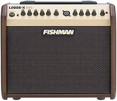 Fishman Loudbox Mini - Amplificadores combo