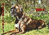 INDIGOS UG - Türschild FunSchild - SE441 DIN A4 laminiert ACHTUNG Hund Deutscher Boxer - für Käfig, Zwinger, Haustier, Tür, Tier, Aquarium