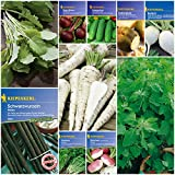 Gemüse-Saatgut-Set 'Traditionsgemüse' - 10 Sorten Gemüse-Samen in einem Gemüse-Saat Sortiment zur Anzucht von Pastinaken, Steckrübe, Schwarzwurzel, Salatgurke uvm. - Saatgut von Kiepenkerl