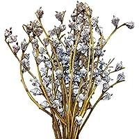 Ramo de flores secas naturales de eucalipto Globulus, 61 cm de alto, color azul