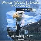 Whales, Wolves & Eagles of Glacier Bay (UK Import)