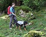 EQdog 360-552 Cool Dog Hundekühlweste, XXS, grau - 4
