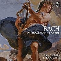 Musikalisches Opfer, BWV 1079: Canon a 2 violini in unisono - Canon Violino Musica