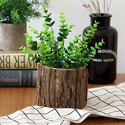 Lembeauty Pot de fleurs en écorce de bureau en bois nature, petit vase pour plantes succulentes, décoration de bureau, Bois, Taille S