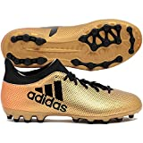 adidas Herren X 17.3 AG Fußballschuhe, Gold (Tagome/Cblack/Solred), 46 EU