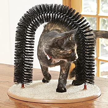 Le Chat Purrfect Arch?Self de toilettage et de massage pour chats et chatons, avec sac de transport d'herbe à chat (à partir de l'anglais)