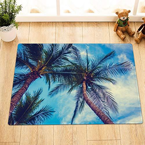 EdCott Tropische Pflanze Palme Blauer Himmel Flanell Schlafzimmer Teppich Innendekoration Matte Außentür Fußmatte Badezimmermatte Küchentür Matte Haushalt Quadratmatte Farbe 40x60cm -