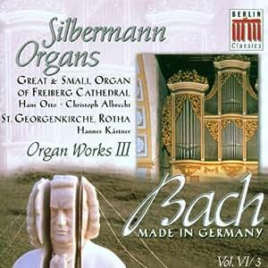 Silbermann Organs-Organ Work I