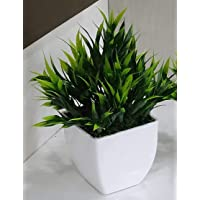 Planters Artificial Bamboo Plant with Plastic Pot (Green, White, Pack of 1)