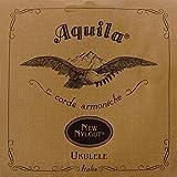 Aquila 31U Cordes Ukulele - CGDA