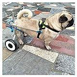 Haustier Rollstuhl, 1,5 Kg (3,3 Lbs) - 50 Kg (110 Lbs), Multi-Direktionale Anpassung, zwei Räder, Geeignet für große und kleine Hunde, Katzen und andere Tierhinter Beine Rehabilitation New Walking, Mu