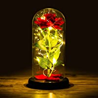 Rosa Eterna, Kit di Rose, La Bella e La Bestia Rose Incantate, Elegante Cupola di Vetro con Base Pino Luci LED, Regali…