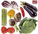 1art1 60025 Kochkunst - Buntes Gemüse Wand-Tattoo Aufkleber Poster-Sticker 48 x 46 cm