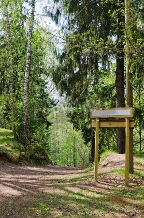 """Leinwand-Bild 30 x 50 cm: """"Wooden sign board on the natural trail In the forest park"""", Bild auf Leinwand"""