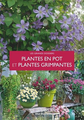 plantes-en-pot-et-plantes-grimpantes