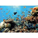 Vlies Fototapete PREMIUM PLUS Wand Foto Tapete Wand Bild Vliestapete - Unterwasser Aquarium Fische Korallen Meer - no. 1922, Größe:208x146cm Vlies