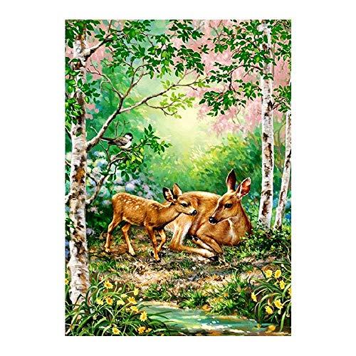 YGHBKL Secret Garden Scenic Floral Diamant Malerei Volle Runde Sikawild DIY Sticking Bohrer Kreuzstickerei 5d Dekoration Runde Bohrer 40x55 cm -