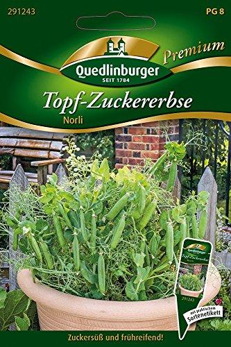 Topf-Zuckererbsen Norli von Quedlinburger Saatgut