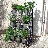 Plant Theatre - Estante para plantas, diseño metálico, color negro