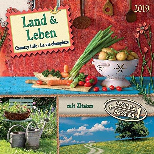 Bauerngarten - Cottage Garden - Jardin de Campagne 2019 Artwork