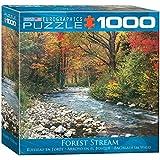 Euro Gráficos Puzzle 1000 piezas - Bosque Arroyo (8 x 8 caja) (MO) - (EG80002132)