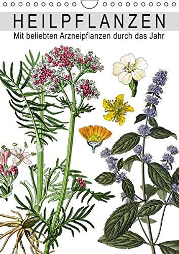 Heilpflanzen (Wandkalender 2016 DIN A4 hoch): Mit beliebten Arzneipflanzen durch das Jahr (Monatskalender, 14 Seiten) (CALVENDO Gesundheit)