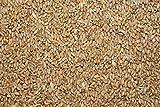 25kg Weizen direkt vom Landwirt, Ernte 2015