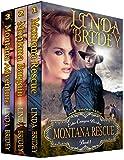 Echo Canyon Brides Box Set - Books 1 - 3: Historical Cowboy Western Mail Order Bride Bundle (Echo Canyon Brides Box Sets) (English Edition)