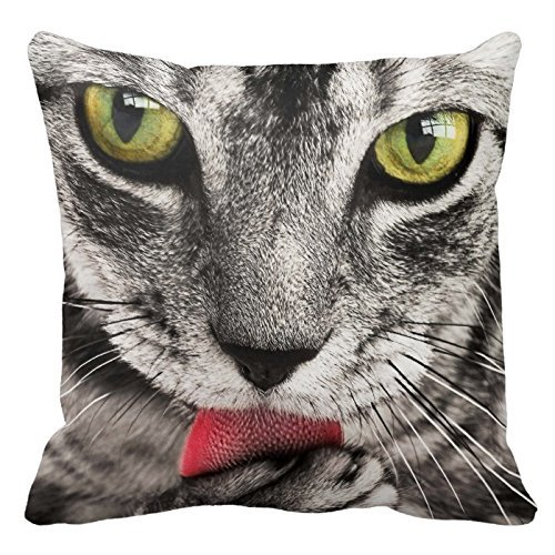 Cat Portrait Throw pillowscustomized Square Custom Throw Pillow Case Cushion Cover Pillowcase Pillow Cover 16 X 16