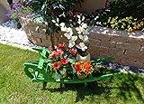 Große Schubkarre Holz, Gartendeko Karre zum Bepflanzen, Blumentöpfe, Pflanzkübel, Pflanzkasten, Blumenkasten, Pflanzhilfe, Pflanzcontainer, Pflanztröge, Pflanzschale, Schubkarren 100 cm HSOF-100-GRASGRÜN Blumentopf, Holz, No-1 grasgrün amazon grün dunkelgrün mit Lasur lasiert auf Wasserbasis Pflanzgefäß, Pflanztöpfe Pflanzkübel