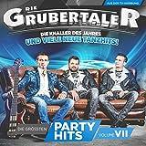 Die größten Partyhits Vol. 7 (das neue Album 2016)