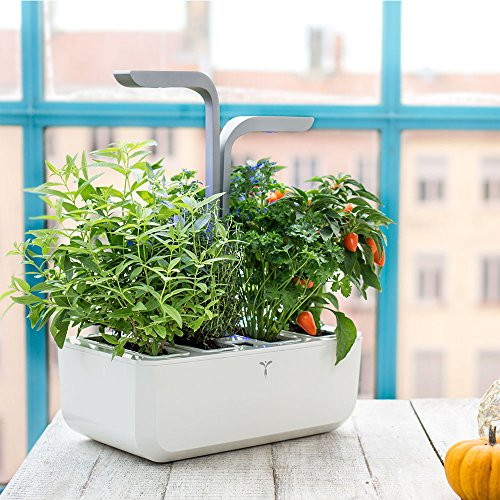 Potager Véritable® SMART Arctic White - Technologie ADAPT' LIGHT - Jardin autonome d'intérieur Made in France (Blanc/Gris argenté)