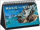 Tischaufsteller - Magie der Meere: 365 fantastische Begegnungen