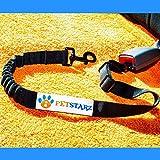 PETSTARZ Original Hundegurt fürs Auto - Hundesicherheitsgurt aus Nylon mit elastischer Rückdämpfung - Hundegurt individuell verstellbar - Hundeanschnallgurt für alle Größen geeignet