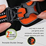 fiE FIT INTO EVERYWAY Range Of Front Side No Pull Dog Harness Outdoor Adventure 3M Reflective Pet Vest with Handle… 13