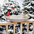 API 650 Heated Bird Bath with Mounting Bracket Garden, Maison, Jardin, Pelouse, La maintenance von ALLIED PRECISION auf Du und dein Garten