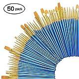 Zoiibuy 50 Stück Künstlerpinsel, Premium Nylon Kunst Pinsel-Sets für Aquarell, Acryl & Ölgemälde Perfekt für Anfänger, Künstler und Gemälde Liebhaber (50er Blau)