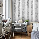 murando - PURO TAPETE - Realistische Tapete ohne Rapport und Versatz - Kein sich wiederholendes Muster - 10m Vlies Tapetenrolle - Wandtapete - modern design - Fototapete - Streifen weiß Beton f-C-0019-j-b