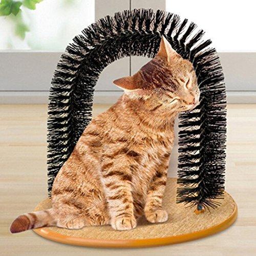 Der Katzenbogen für Deine Samtpfote
