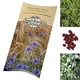 Saatgut Set: 'Anti-Aging Pflanzen' 3 Superfoods und Heilpflanzen als Samen in schöner Geschenk-Verpackung