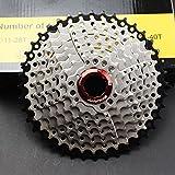 CYSKY 10-Fach Kassette 11-42T MTB Kassette 10 Speed Fit für Mountainbike, Rennrad, MTB, BMX, SRAM, Shimano - 9 Speed