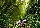 XXL Poster 100 x 70cm (S-832) grüner Dschungel Urwald mit Bachlauf über Steine fliessendes Wasser grüne Bäume (Lieferung gerollt!)