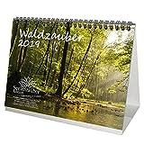 Waldzauber · DIN A5 · Premium Tischkalender/Kalender 2019 · Wald · Bäume · Baum · Edition Seelenzauber
