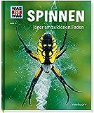 Spinnen. Jäger am seidenen Faden
