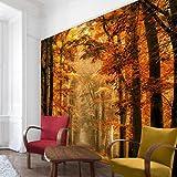 Bilderwelten Vliestapete - Märchenwald im Herbst - Fototapete Quadrat Vlies Tapete Wandtapete Wandbild Foto, Größe HxB: 336cm x 336cm