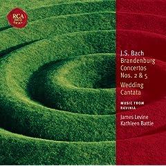 Brandenburg Concerto No. 5 in D Major, BWV 1050: Affettuoso